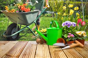 Hausbau: So gestalte ich meinen Garten